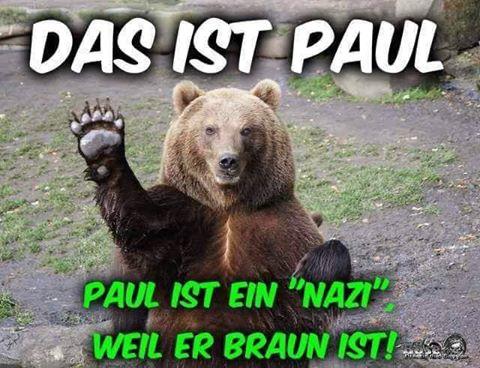 Nazi Bär Braun.jpg